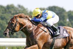 Toylsome mit Stephane Pasquier gewinnt den German Tote - Europa-Sprint. www.galoppfoto.de - Frank Sorge