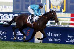 Brown Panther siegt im Dubai Gold Cup 2015. www.galoppfoto.de - Frank Sorge