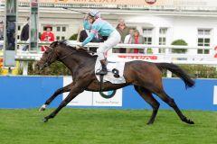 Sehrezad gewinnt 2008 mit Jiri Palik den Jaxx-Pokal. www.galoppfoto.de - Sabine Brose