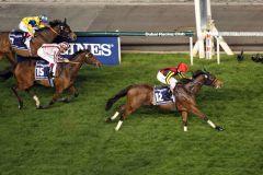 Star schlägt Star: Gentildonna gewinnt das Dubai Sheema Classic vor Cirrus des Aigles. Foto: www.galoppfoto.de - Frank Sorge