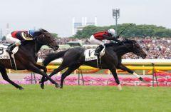 Der Platini-Enkel Eishin Flash gewinnt das Japanische Derby. Foto: offiziell