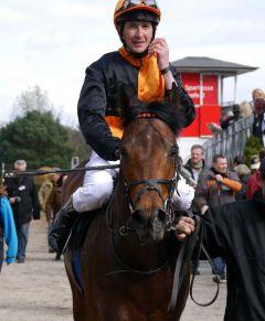 Lucky Lion mit Andreas Weis nach seinem Sieg in Krefeld am 23.03.2014. Foto: Karina Strübbe