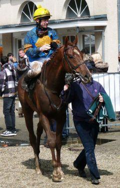 Mystic Lord nach dem Rennen am 22.04.2012 in Krefeld - Karina Strübbe
