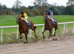 Roi heureux kann Victorious auf den letzten Metern abschütteln. Foto Karina Strübbe