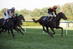 Amaron mit Andreas Helfenbein gewinnt das Zukunfts-Rennen 2011. www.galoppfoto.de - Sarah Bauer