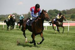 Arlington (Adrie de Vries) gewann wie ein Pferd besserer Klasse. www.galoppfoto.de