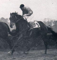 Armgard (GER) 1948
