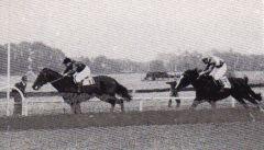 Asterblüte gelingt unter Hein Bollow einer der seltenen Stutensiege im Union-Rennen unter Hein Bollow, vor Treiber unter Walter Held. Foto Archiv (2)