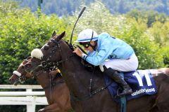 Bad Harzburg, Mr Beauregard (Nr. 11) mit Michael Cadeddu gewinnt am 30.07.2016. www.galoppfoto.de