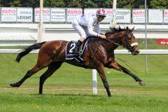 Ballydoyle gewinnt im Stil eines besseren Pferdes. www.galoppfoto.de - WiebkeArt