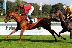 Bella Duchessa mit Dennis Schiergen gewinnt in Köln am 27.09.2014. www.galoppfoto.de - Sandra Scherning