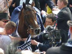 Camelot - der Derbysieger wird gefeiert. Foto: Heidrun Küster
