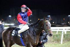 Cassilero gewinnt mit Eugen Frank im Preis von Lignieres am 08.02.2015 in Neuss. Foto: Dr. Jens Fuchs