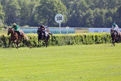 Fünf Längen liegen zwischen Chantilly und Andrasch Starke zu der Konkurrenz am 24.05.2015 in Hoppegarten. www.galoppfoto.de - Sabine Brose