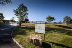 Das Haras d'Ombreville in der Nähe von Deauville möchte gezielt deutsche Züchter ansprechen. Foto: Copyright Agence Dollar