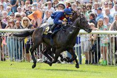 Dabbitse mit Harry Bentley gewinnt. www.galoppfoto.de - Sabine Brose