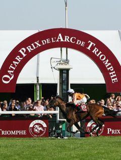 Der 90. Prix de l'Arc de Triomphe 2011 mit der überlegenen deutschen Siegerin Danedream mit Andrasch Starke. www.galoppfoto.de - Frank Sorge