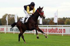 Mit neun Längen voraus: Der Brümmerhofer Monsun-Sohn Shimrano ist mit Adrie de Vries im EBF-Rennen hochüberlegen. www.galoppfoto.de - Sabine Brose