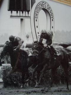 Der Derbyeinlauf 1978 mit Gestüt Bonas Zauberer (Bernd Selle) als Sieger. www.galopp-hamburg.de
