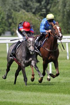 Der Jockey macht sich klein - Samoa (links) gewinnt mit dem Champion Bauyrzhan Murzabayev im Sattel. ©galoppfoto - WiebkeArt