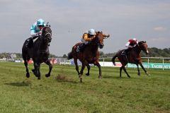 Der Sieger kommt von links - Quinindo mit Adrie de Vries vor Waldpark und Dagostino. www.galoppfoto.de - Frank Sorge