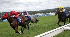 Die beiden Burk-Pferde 1-2 .... Unfortunately gewinnt mit Toni Piccone vor Havana Grey (Nr. 1) mit P.J. McDonald im Sattel. www.dequia.de