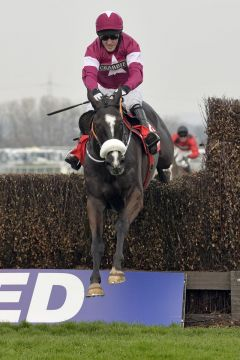 Don Cossack mit Anthony McCoy als Sieger in der Melling Chase. www.galoppfoto.de - John James Clark