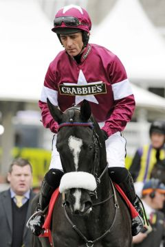 Don Cossack mit Davy Russell in Aintree. www.galoppfoto.de - John James Clark