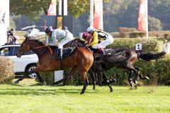 Ein erfolgreiches Debut für die Ebbesloherin Drejö mit Adrie de Vries (vorne)  im Zweijärigen-Rennen. www.galoppfoto.de - Sabine Brose