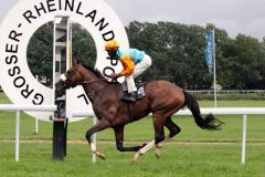 Earl of Tinsdal mit Eduardo Pedroza gewinnt den Rheinland-Pokal, Gr. I, 2011. www.galoppfoto.de - Sandra Scherning