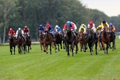 Erstmals seit vielen Jahren wieder 18 Pferde auf Deutschlands längster Geraden im BBAG Auktionsrennen. www.galoppfoto.de - Frank Sorge