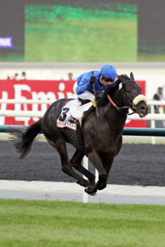 """Fliegt"" zum Sieg im Dubai Gold Cup: Cavalryman mit Silvestre de Sousa. www.galoppfoto.de - Frank Sorge"