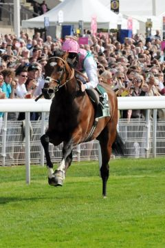 Frankel und Tom Queally auf dem Weg zu Sieg Nummer 13 - in den Juddmonte International Stakes in York. Foto: John James Clark