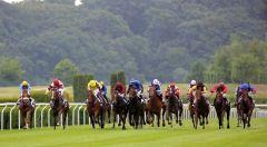 """14 Pferde auf einem kniffeligen Kurs mit einem Jockey, der """"ohne Plan"""" aber mit viel Fortune und Können agiert: Jozef Bojko (weisse Kappe mit blauen Sternen) und Full Rose. Foto: Dr. Jens Fuchs"""