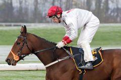 Galway Girl siegt mit Stephen Hellyn als 19:1-Chance im Zweijährigen-Rennen in Dortmund. www.galoppfoto.de - Stephanie Gruttmann
