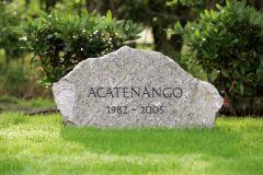 Gedenkstein für Acatenango im Gestüt Fährhof. www.galoppfoto.de - Frank Sorge
