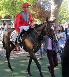 Gestüt Ammerlands Lady Frankel mit Jockey PIerre Charles Boudot nach dem Gr. III-Sieg im Prix de Lieury in Deauville 2017. www.dequia.de