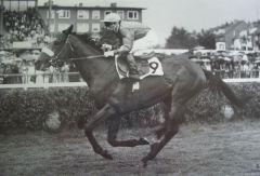 Gestüt Bonas Zauberer mit Bernd Selle  Derbysieger 1978. www.galopp-hamburg.de