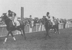 Gestüt Schlenderhans Ariel gewinnt das Derby 1914. Foto: www.galopp-hamburg.de
