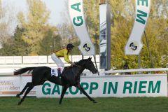 Global Thrill siegt unter Alexander Pietsch im BBAG-Auktionsrennen. Foto www.galoppriem.de - turfcast