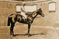 1895 Derbysieger Impuls