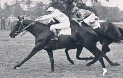 Ivresse (FR) 1955