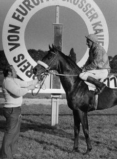 Windwurf als Sieger im Preis von Europa 1975. Foto: Archiv Gestüt Ravensberg