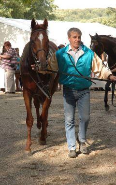 Daktani nach seinem Sieg im Frankenheim-Cup 88. Junioren-Preis. Foto Suhr