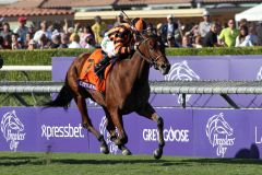Little Mike gewinnt mit Ramon Dominguez den Breeders' Cup Turf. www.galoppfoto.de - Petr Guth