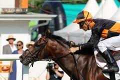 Lucky Lion bei seinem 2. Platz im Derby. Foto: Dr. Jens Fuchs
