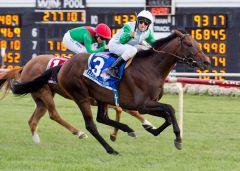 Lucky Speed sorgt für den ersten Sieg von Andrasch Starke in den USA. Foto: offiziell