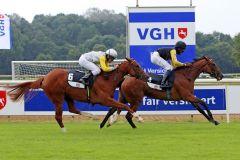 Gleich beim ersten Start im Zweijährigen-Rennen erfolgreich: Majestic Hope gewinnt mit Eduardo Pedroza in Hannover. www.galoppfoto.de - Sabine Brose