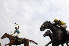 Der Mann für die großen Gesten: Michael Cadeddu auf Al Queena. www.galoppfoto.de - Frank Sorge