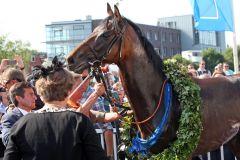 Mit dem 'Blauen Band' und Lorbeerkranz: Lucky Speed. www.galoppfoto.de - Sabine Brose